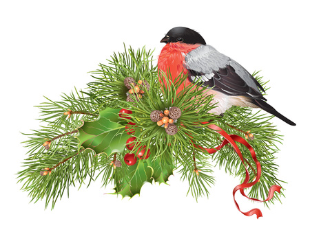 Christmas with traditional decoration, christmas tree branches and cute bullfinch. Design element for winter sale, party invitation or greeting card.