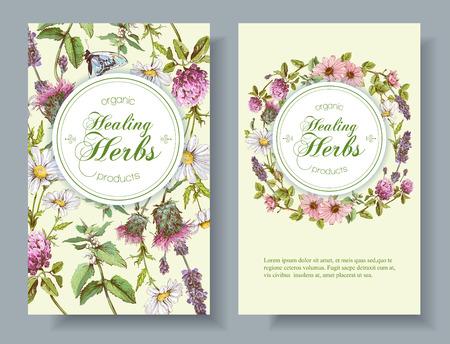 fleurs et d'herbes sauvages verticales. Conception pour le thé à base de plantes, cosmétiques naturels, miel, produits de soins de santé, l'homéopathie, l'aromathérapie. Avec place pour le texte Vecteurs