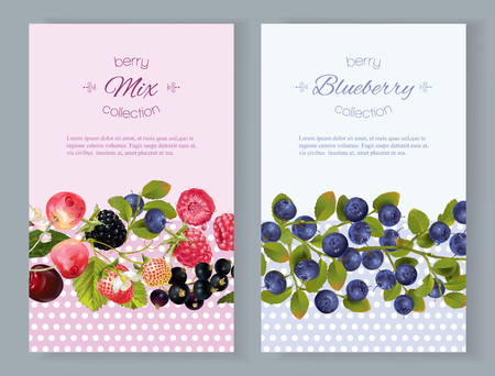 Vector vertical banners with berries. Design for cosmetics, sweets and candy, pastry and bakery filled with berries, beauty organic products, health care products, aromatherapy. With place for text Иллюстрация