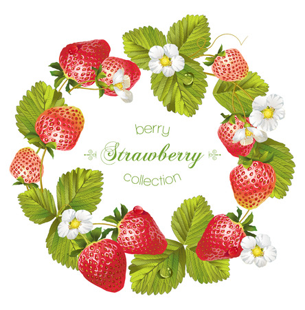 Vector strawberry round frame. Design for tea, natural cosmetics, beauty store, pastry filled with strawberry,dessert menu, organic health care products, perfume, aromatherapy. With place for text