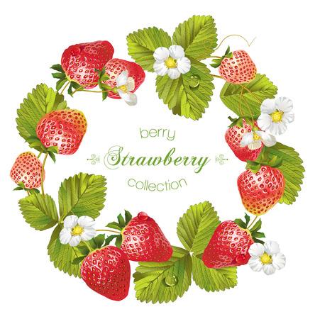 Vector fraise cadre rond. Conception pour le thé, les cosmétiques naturels, magasin de beauté, pâtisserie remplie de fraises, carte des desserts, produits de soins de santé organiques, parfum, aromathérapie. Avec place pour le texte