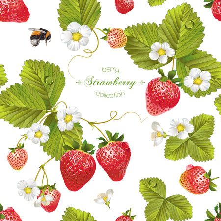 Vector strawberry seamless pattern. Background design for tea, juice, natural cosmetics, sweets and candy with strawberry filling, farmers market,health care products. Best for textile,wrapping paper.