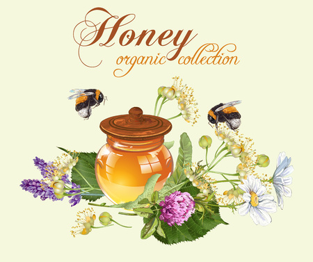 Vector herbal honey banner with bumblebees. Design for herbal tea, natural cosmetics, honey, health care products, homeopathy, aromatherapy, perfume. With place for text Illustration