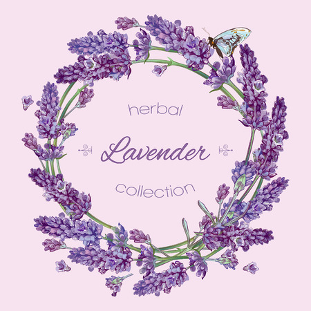 beauty products: Vector lavender flowers wreath banners on lilac background. Design for cosmetics, make up, store, beauty salon, natural and organic products, health care products, aromatherapy. With place for text