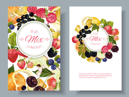 Vector fruit and berry banners. Design for juice, tea, ice cream, jam, natural cosmetics, sweets and pastries filled with fruit, dessert menu, health care products. With place for text Zdjęcie Seryjne - 66322741