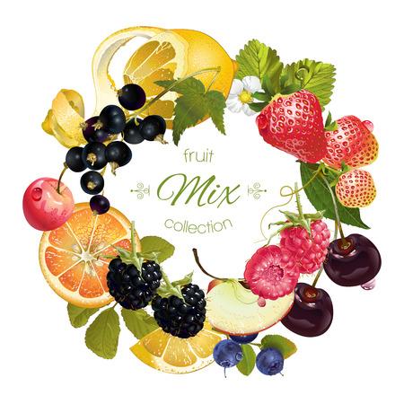 Vector fruit en bessen krans. Ontwerp voor sap, thee, ijs, jam, natuurlijke cosmetica, snoep en gebak gevuld met fruit, dessertkaart, producten voor de gezondheidszorg. Met plaats voor tekst