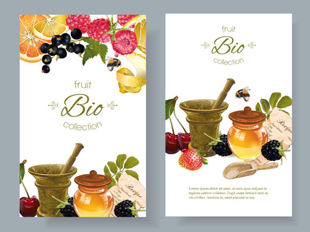 homeopathy: Vector fruit and berry cosmetic banner with honey and mortar. Design for natural cosmetics, health care products, aromatherapy, homeopathy, grocery. With place for text Illustration