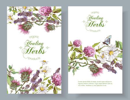 Vector vertical de flores silvestres y hierbas banderas. Diseño de té de hierbas, cosméticos naturales, miel, productos de cuidado de la salud, la homeopatía, la aromaterapia. Con lugar para el texto Ilustración de vector