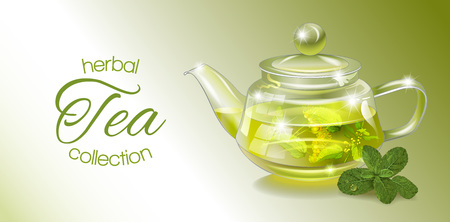 homeopathy: Vector herbal tea banner with transparent teapot and mint. Design for herbal and green tea, drink menu, homeopathy, aromatherapy and health care products. With place for text.