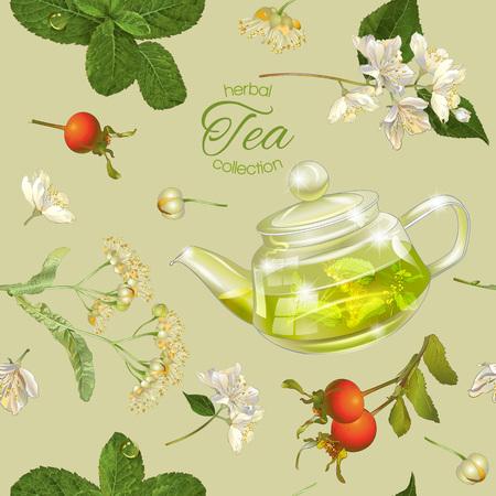 Vector kruidenthee naadloos patroon banner met transparante theepot bloemen en kruiden. Ontwerp voor kruiden en groene thee, drank menu, homeopathie, aromatherapie en producten voor de gezondheidszorg. Best voor het verpakken Vector Illustratie