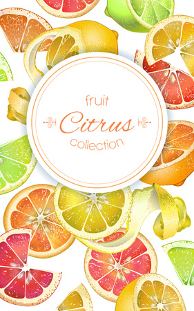 Vector citrus vertical banner. Design for juice, tea, ice cream, lemonade, jam, natural cosmetics, sweets and pastries filled with citrus fruit, dessert menu, health care products. With place for text
