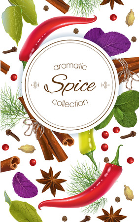 seasonings: Vector spice vertical banner with various seasonings on white background. Red chili peppers, bay leaves, cinnamon and other spices. Design for packaging, spice shop, recipe web site, cooking book Illustration