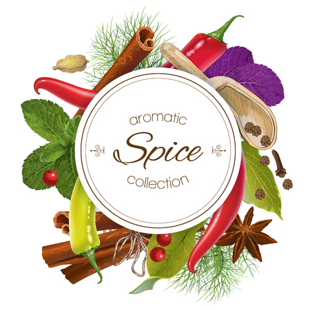 seasonings: Vector spice round banner with various seasonings on white background. Red chili peppers, bay leaves, cinnamon and other spices. Design for packaging, spice shop, recipe web site, cooking book Illustration