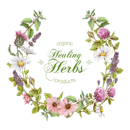 homeopathy: vertical wild flowers and herbs wreth. Design for herbal tea, natural cosmetics, honey, perfume, health care products, homeopathy, aromatherapy. With place for text