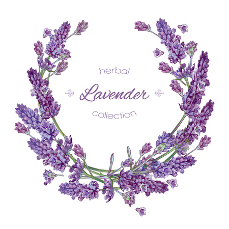 lavender flowers wreath on white. Design for natural cosmetics, beauty store, health care products, perfume, essential oil, aromatherapy. Can be used as greeting card or wedding invitation Ilustração