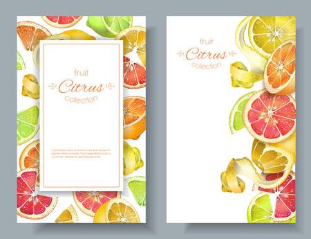 柑橘類の濃いバナー  イラスト・ベクター素材