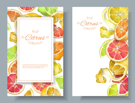 Citrus vertcal banners Иллюстрация