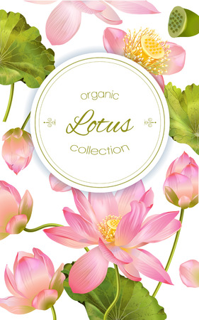 Lotus-Blume Banner Standard-Bild - 70077450