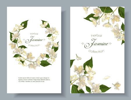 Jazmín flores banderas Ilustración de vector