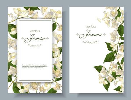 Bannières de fleurs de jasmin Vecteurs