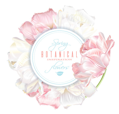 Round banner with white and pink tulip flowers. Spring tender design for natural cosmetics, perfume, florist shop. Can be used as beauty logo