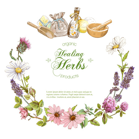 Vector herbal banner Illustration