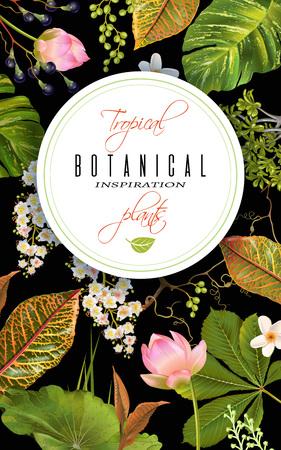 Tropial 植物バナー  イラスト・ベクター素材