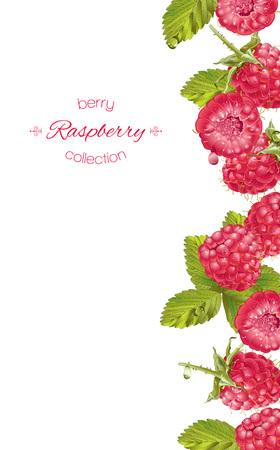 Raspberry vertical banner Ilustrace
