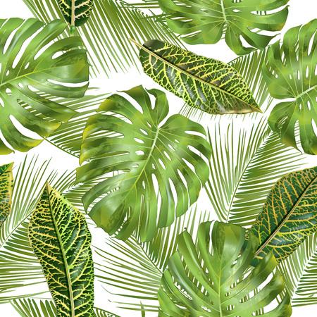熱帯の葉パターン