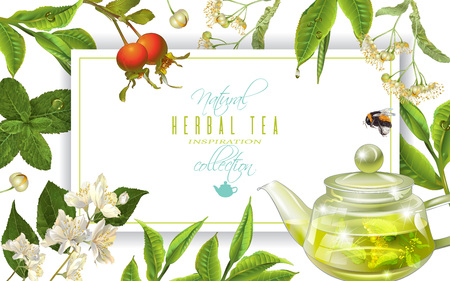 Herbal tea frame Vectores