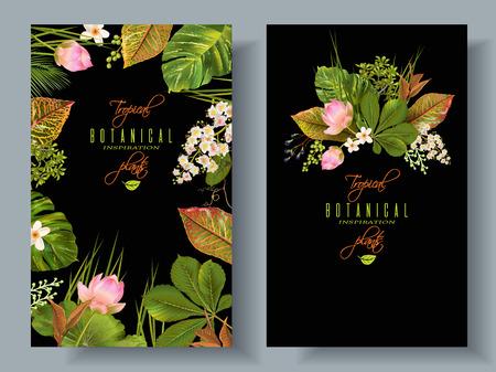 Bannières des plantes tropicales Banque d'images - 75476001