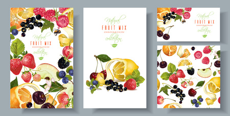 Fruit and berry banners set