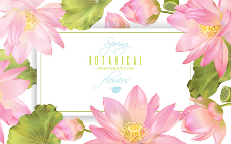homeopathic: Lotus flower banner