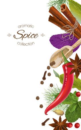 Spice vertical banner Иллюстрация