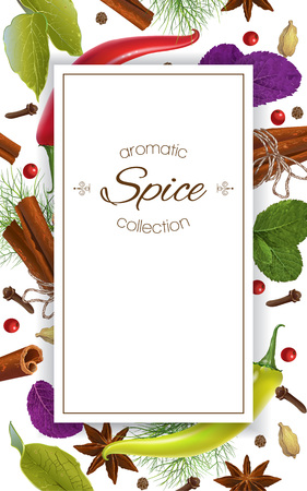 Spice vertical banner Illustration