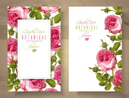 Rose vertical banners Illustration
