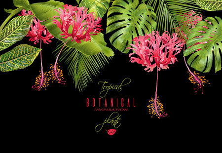 wedding reception decoration: Tropical flower border