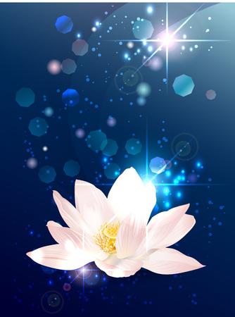 Lotus esoterische banner