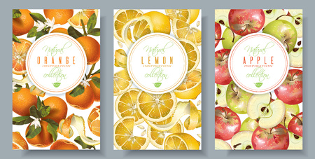 Obst vertikale Banner Standard-Bild - 78675331