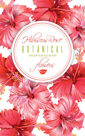 Hibiscus flower banner