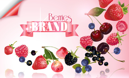 Berry mix falling banner Illustration