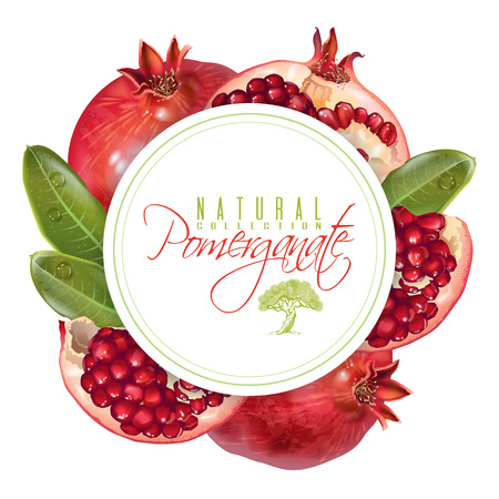 Pomegranate round banner