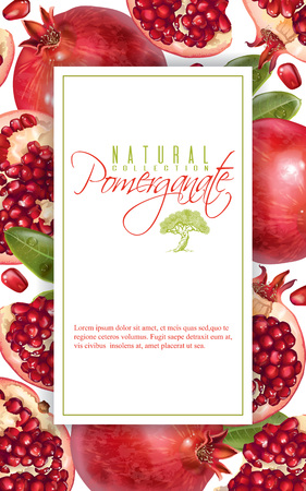 Pomegranate vertical banner