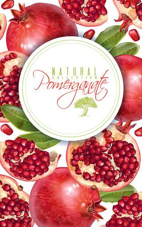 Pomegranate vertical round banner 일러스트