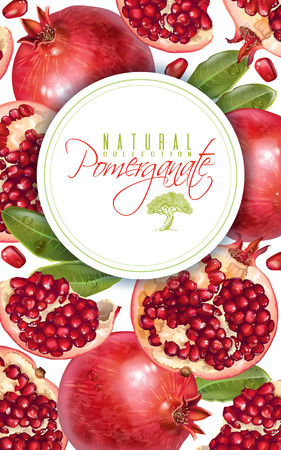 Pomegranate vertical round banner Illustration