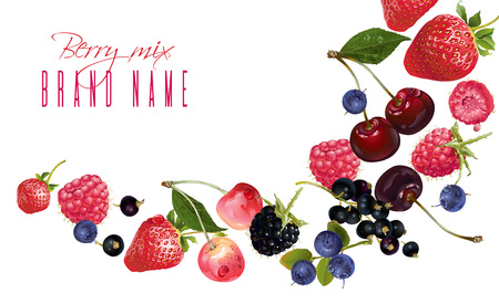 Berry mix falling banner Vectores