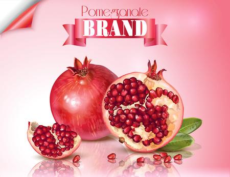 Pomegranate realistic illustration Stok Fotoğraf - 80527950