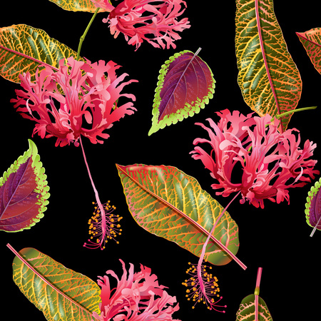 Tropial 植物パターン  イラスト・ベクター素材