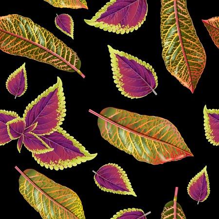 열대 식물의 패턴.
