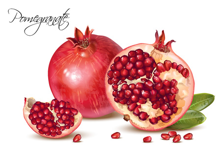 Pomegranate realistic illustration